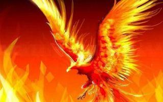 Птица, дарующая возрождение — символ феникса в фен-шуй и правила активации