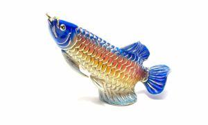 Удача на крючке — рыба по фен-шуй, значение, как разместить талисман