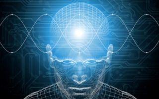 Как развить внимание: методики и правила из психологии