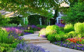 Дача мечты — грамотный фен-шуй участок, особенности организации территории сада