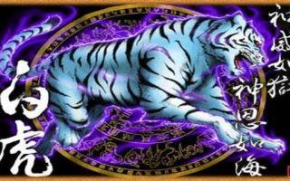 Мощный защитник: тигр по фен-шуй, значение талисмана и куда ставить