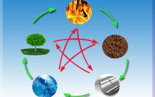 Дерево, огонь, металл, вода, земля – главные 5 элементов фен-шуй