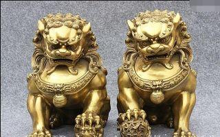Мощные защитники — собачки фу в фен-шуй, описание львов будды, куда ставить в доме
