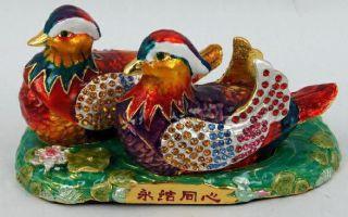 Лекарство от одиночества — утка мандаринка, значение талисмана по фен-шуй и секреты использования