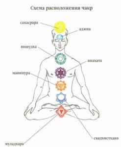 Схема расположения чакр
