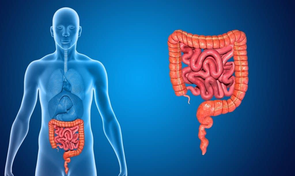 Психосоматические причины проблем с кишечником